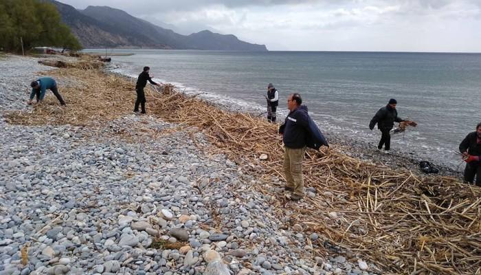 Εθελοντές καθάρισαν παραλία στη Παλαιόχωρα (φωτο)