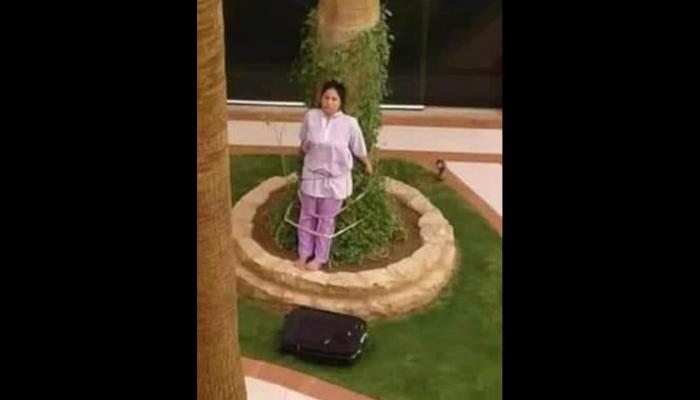 Πλούσιοι Σαουδάραβες έδεσαν οικιακή βοηθό σε δέντρο επειδή ξέχασε έπιπλο στον κήπο