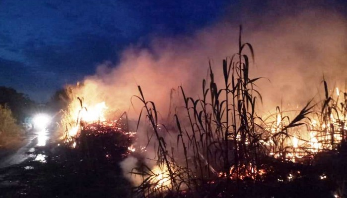 Πυρκαγιά σε καλάμια στο Μάλεμε (φωτο)