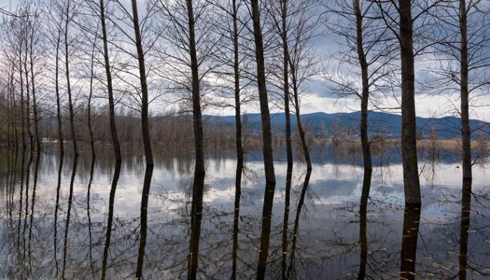 Παρεμβάσεις στη λίμνη Δοϊράνη για τη βελτίωση της εικόνας της περιοχής