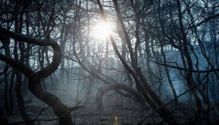 Σε ύφεση και οριοθετημένη η μεγάλη πυρκαγιά της Εύβοιας