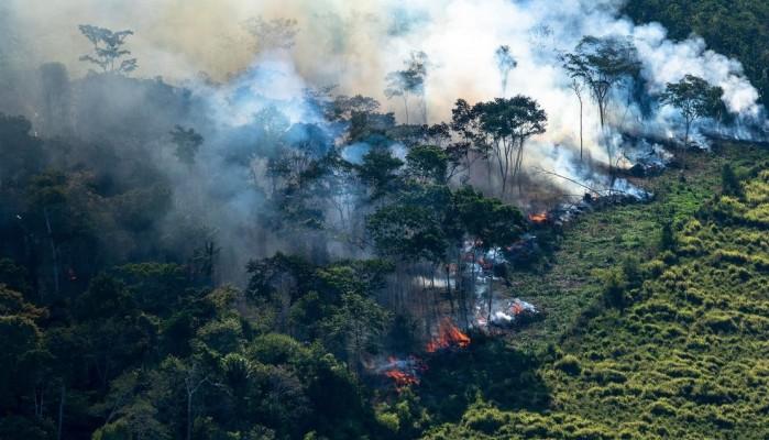 Πυρκαγιές στον Αμαζόνιο: Η παγκόσμια δίψα για το βοδινό κρέας και τη σόγια από τη Βραζιλία