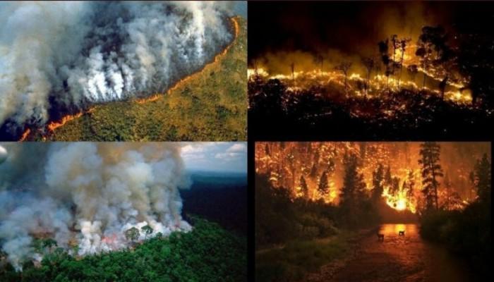 Μπολσονάρου: Όσοι βοηθούν στη διάσωση του Αμαζονίου «αναμιγνύονται» στα εσωρικά της χώρας