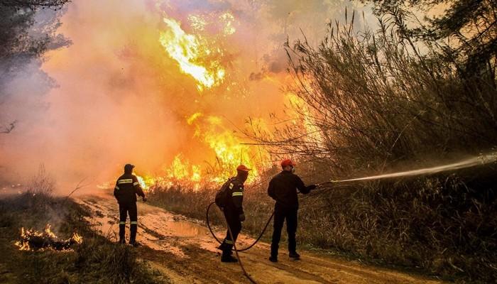 Φωτιά στην Εύβοια: Σε 4 μέτωπα η μάχη με τις φλόγες - Τεράστια οικολογική καταστροφή