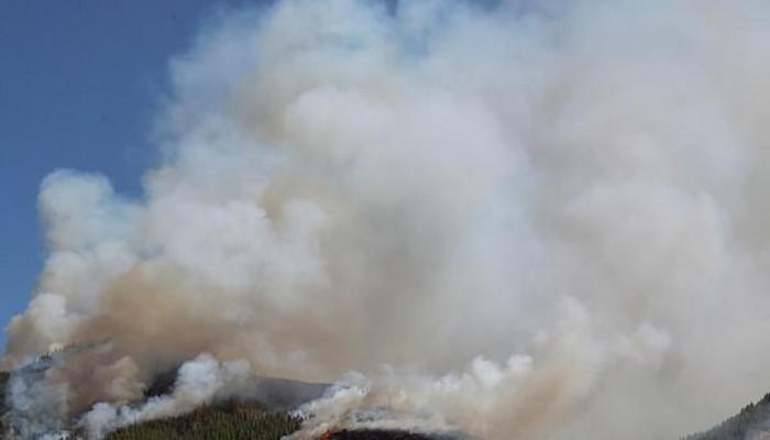 Γκραν Κανάρια: Πάνω από 4.000 άνθρωποι απομακρύνθηκαν από τη ζώνη της μεγάλης πυρκαγιάς