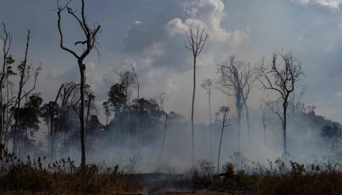 Το δεδομένο που όλοι μοιράζονται για τον Αμαζόνιο και είναι ολότελα… λάθος