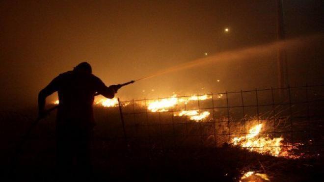 Ζάκυνθος : Σε περίπου 7.500 στρέμματα ανέρχεται η καμένη δασική έκταση φέτος