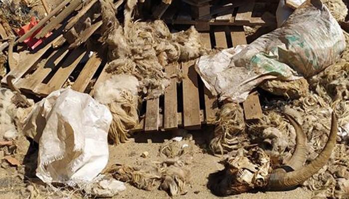 Διογκώνεται η χωματέρη στον δήμο Χανίων - Κανείς δεν τα απομακρύνει