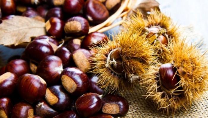 Στις 26-27 Οκτωβρίου η διήμερη γιορτή καστάνου στην Κίσσαμο