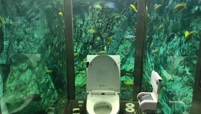 Μια καφετέρια με τουαλέτα-ενυδρείο!