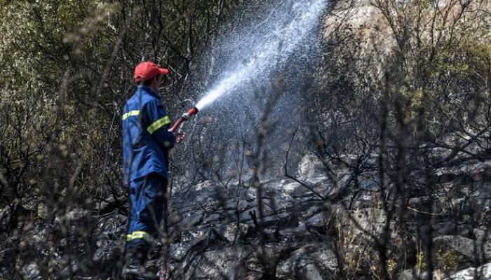 Φωτιά ξέσπασε στην περιοχή της Αγιάς στη Λάρισα