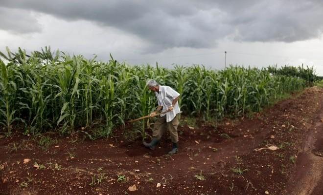 Βενεζουέλα: Έντεκα αγόρια κάηκαν ζωντανά ενώ κυνηγούσαν κουνέλια σε φυτεία με ζαχαροκάλαμα