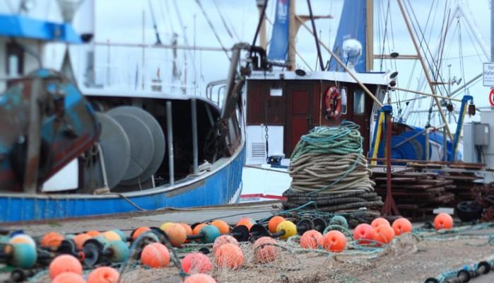 Ενημέρωση για Ειδικές Άδειες Αλιείας Μεγάλων Πελαγικών έτους 2020