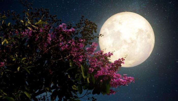 Στον νυχτερινό ουρανό την Τρίτη η ροζ υπερ-πανσέληνος της Άνοιξης