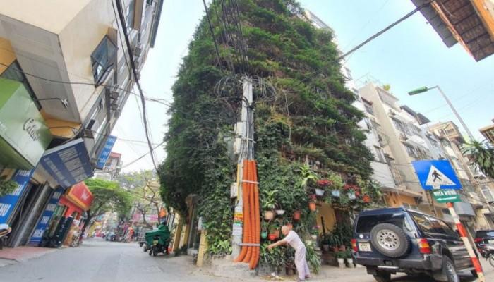 Πενταώροφη πολυκατοικία στη μέση της πόλης καλύπτεται από αναρριχώμενα φυτά
