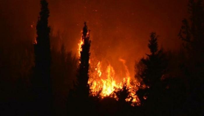 Μεγάλη πυρκαγια στη Ζάκυνθο