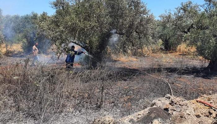 Χανιά: Γλύτωσαν τα χειρότερα - Πυρκαγιά σε υπαίθριο χώρο (φωτο)
