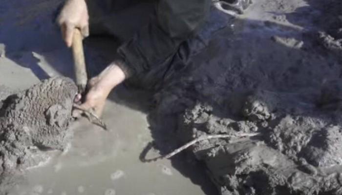 Σημαντική ανακάλυψη στη Σιβηρία: Βρέθηκε μαμούθ ηλικίας 10.000 ετών