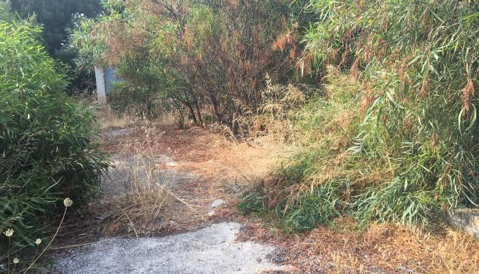 Χανιά: Κίνδυνος φωτιάς στον ΒΙΟΠΑ από ξερά χόρτα και σκουπίδια (φωτο)