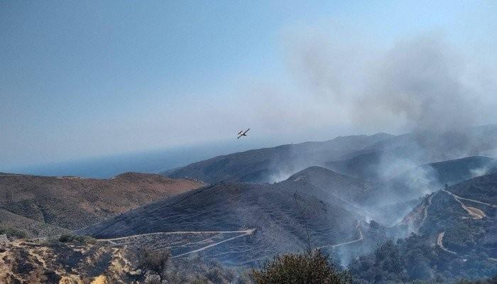 Χανιά: Εκείνοι που συνέβαλαν στην κατάσβεση της μεγάλης φωτιάς στο Σέλινο