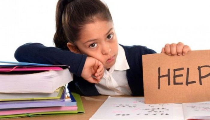 Ρέθυμνο: Πρόγραμμα αξιολόγησης και υποστήριξης παιδιών με μαθησιακές δυσκολίες