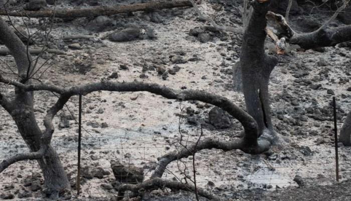 Άνδρας βρέθηκε απανθρακωμένος στο Ηράκλειο