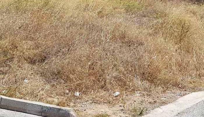 Σε αποψίλωση και καθαρισμό των οικοπέδων του καλούνται οι πολίτες του Ρεθύμνου