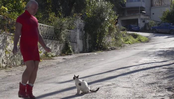 Θρίλερ με τη Δημήτρη της Λέσβου: Φόβοι πως έπεσε θύμα τροχαίου