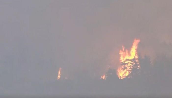 Πυρκαγιά: Άρχισαν να χτυπούν οι καμπάνες στις Κεχριές Εύβοιας (βίντεο)