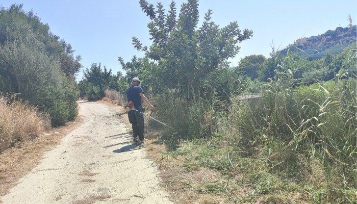 Καθαρισμοί και αποψιλώσεις σε περιοχές του Δήμου Μαλεβιζίου (φωτο)
