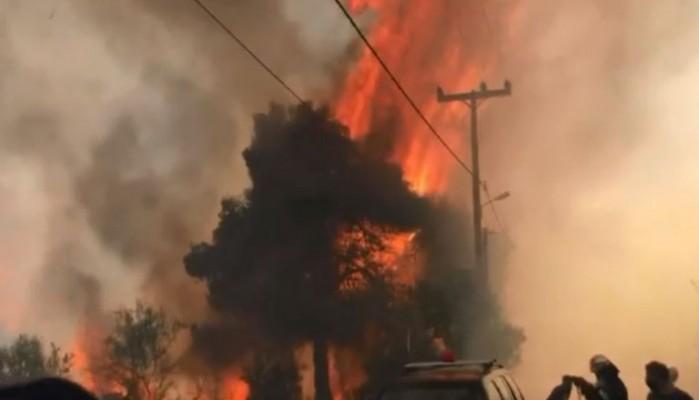 Χαρδαλιάς: Είχαμε 116 φωτιές μέσα σε δύο μέρες – Αυτή είναι κλιματική απειλή