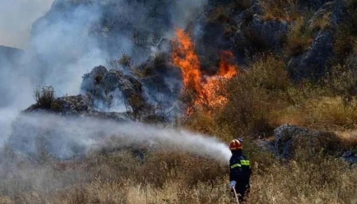 Εύβοια: Φωτιά στη Δάφνη Μαντουδίου - Εκκενώνονται τρία χωριά