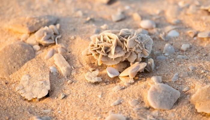 Τριαντάφυλλα της ερήμου: Το απίστευτο φυσικό φαινόμενο που συναρπάζει