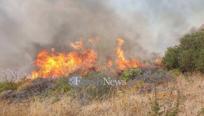 Πυρκαγιά στα Πλακάλωνα στον Δήμο Πλατανιά (φωτο)