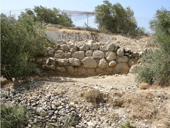 Αρχαία Έλυρος: Η ισχυρή πόλη των Χανίων που «έκοβε» δικό της νόμισμα (φωτό)