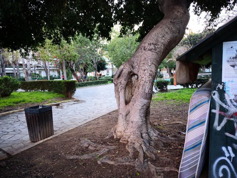 f26375b769e Δείτε τις φωτογραφίες που έστειλε ο αναγνώστης και πάρτε μια γεύση από την  εικόνα ενός κεντρικού πάρκου στα Χανιά που υποτίθεται ότι εκεί παίζουν  παιδάκια
